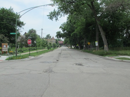 Two sides of one street, two sides of Englewood: on the left, you can see the Sherwood Peace Association Community Garden. This space was previously an empty lot, but was converted into this beautiful community garden. In contrast, the right half of the street is one of the 2,500 city-owned vacant lots in the Englewood neighborhood. Sonya hopes that most empty lots can soon be converted into community gardens. Last week she was at City Hall lobbying so that residents can take ownership of the lots on their street, in the hope that people will be take care of them (and grow veggies!), instead of the land simply going to waste.