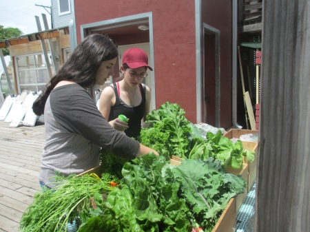 The following day after the tour of Englewood's community gardens,  Meirav, Madison, Miriam and I learned how to work the farmstand at Growing Home. Madison and I helped spray the veggies to keep them cool in the heat.  Growing Home had an incredibly successful day at the farmstand!